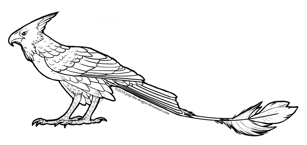 hawk coloring pages photo20