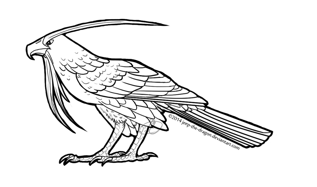 Red tailed hawk coloring page murderthestout for Red tailed hawk coloring page