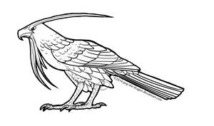 Forest Hawk 2 coloring page