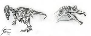 Theropod studies