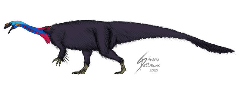 Plateosaurus Soft Tissue Sketch