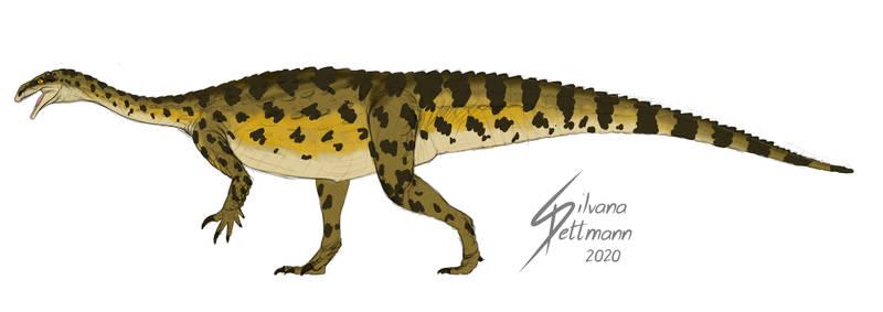 Plateosaurus Crocodylian