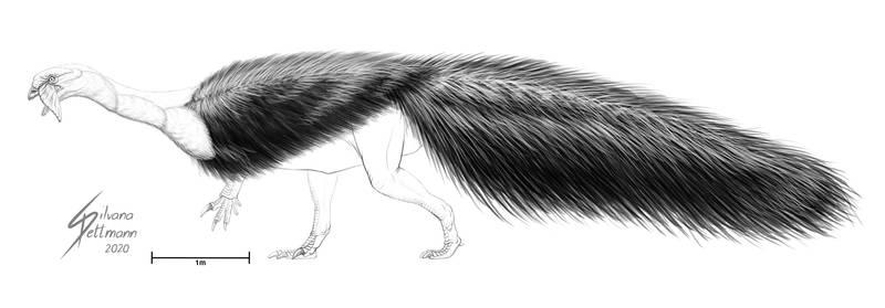 Plateosaurus Test