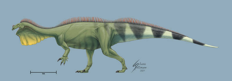 Plateosaurus reptilian