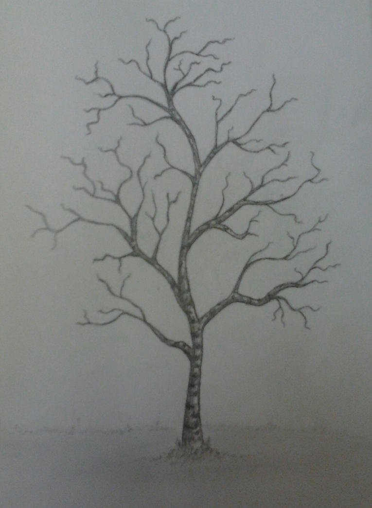 Tree without leaves by ilinea on DeviantArt