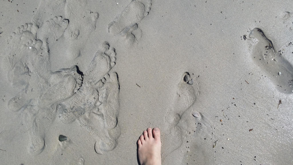 Footprints in the Sand by saykha