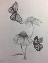 Margaret's Monarchs
