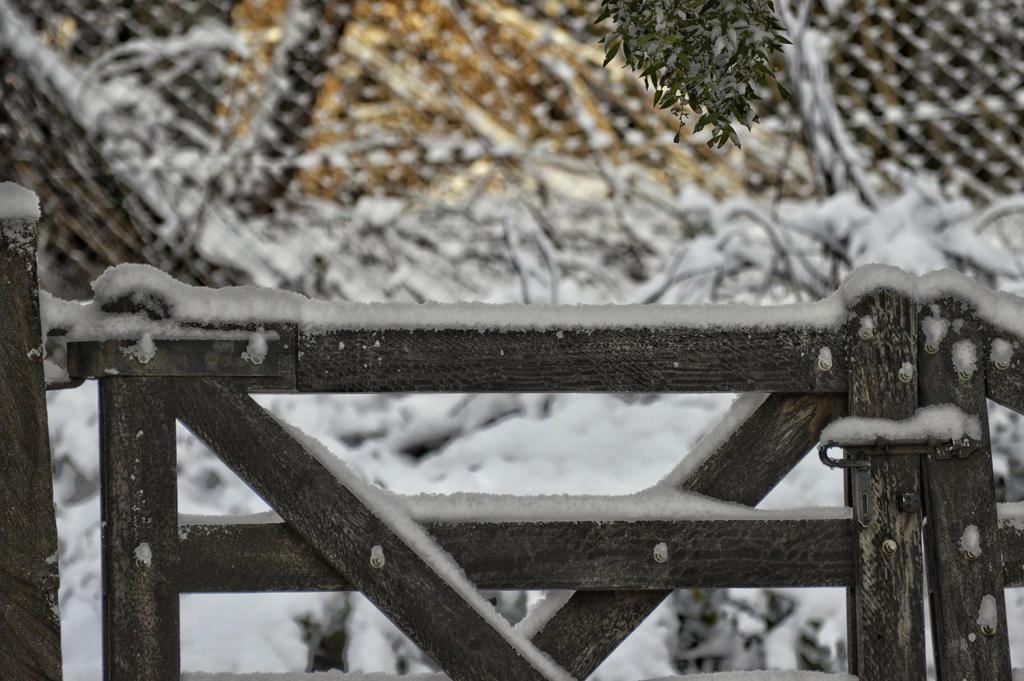 Gate by maxiaringoli