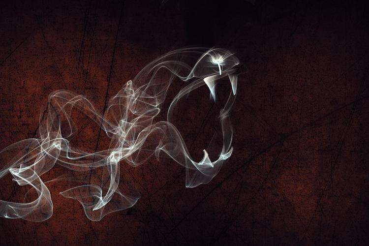 Smoke tigar by Player-Designer