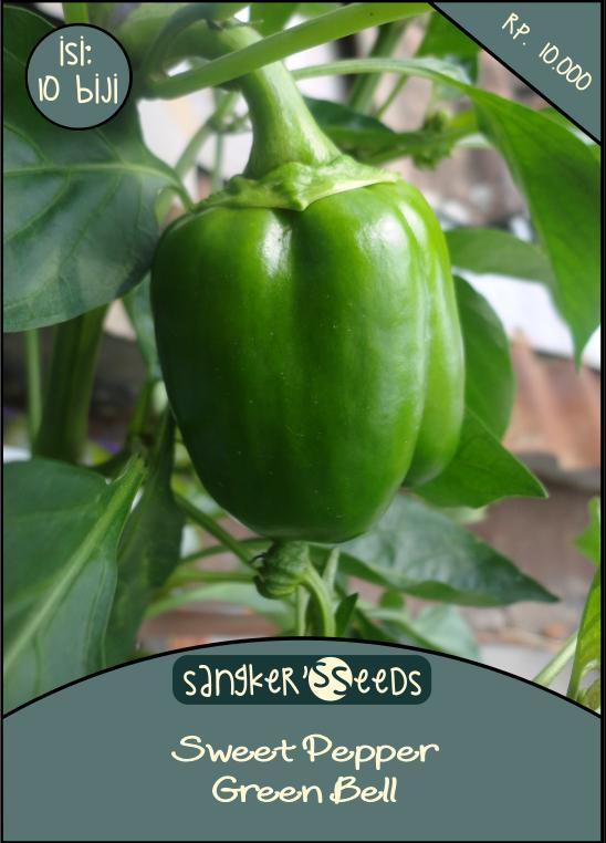Seet pepper - green bell by LCERancientArt