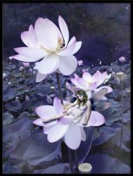 Lotus Dreams by ArtisnotanAccident