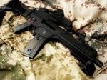 Airsoft Gun G36C with EOtech
