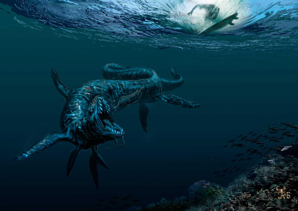 Dangerous Swim On The Great Barrier Reef By BOB777 AJORIS ...