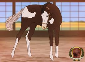 New Glory - foal inspetcion by GutCaballo