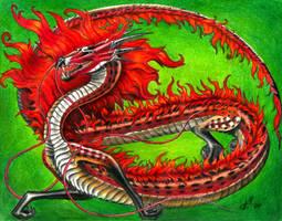 shadowwolf dragon by VyToR