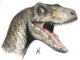 JP raptor head by VyToR