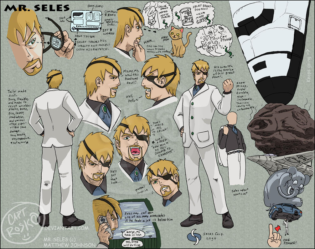 Mr. Seles Character Sheet by CaptRosko