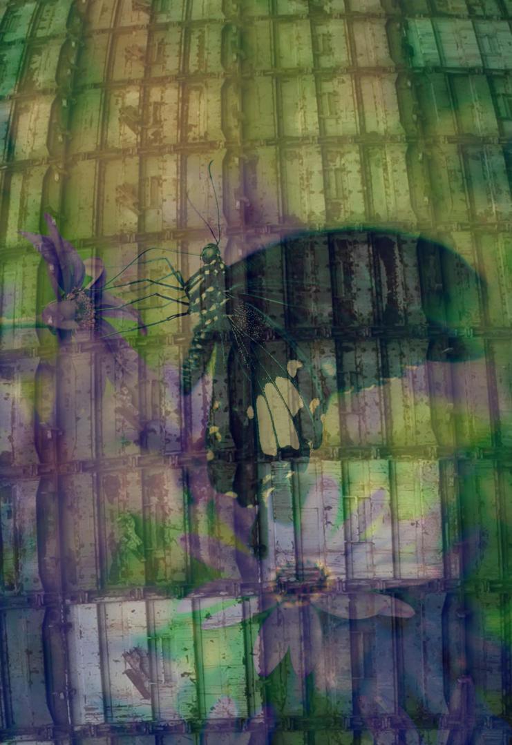 Tokyo Butterfly by Glenn0o7