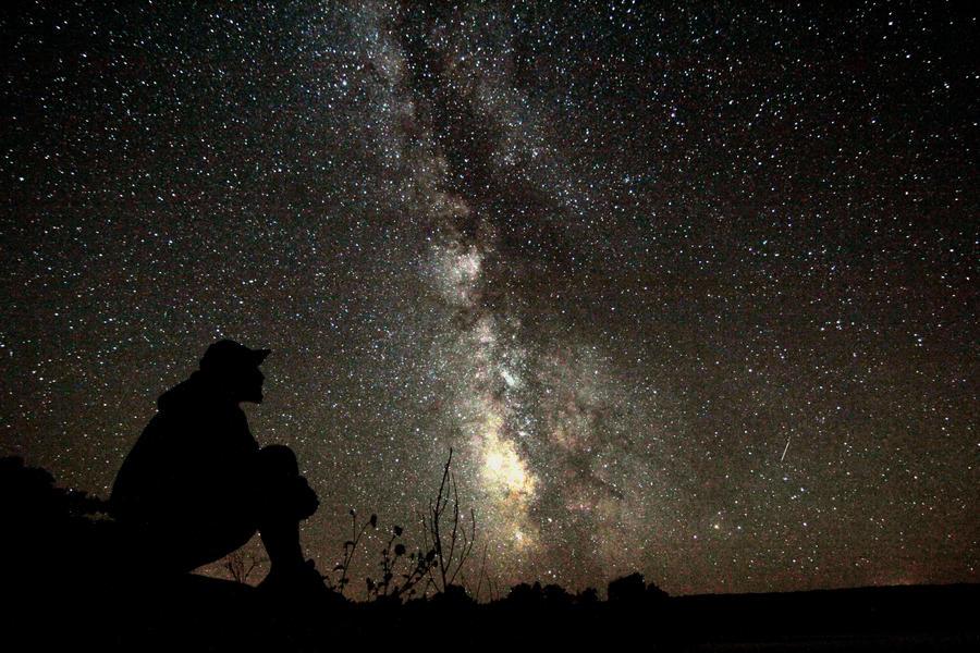 Star gazer by Vladiatorr