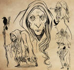 Crone of the Western Wood Character Design Study
