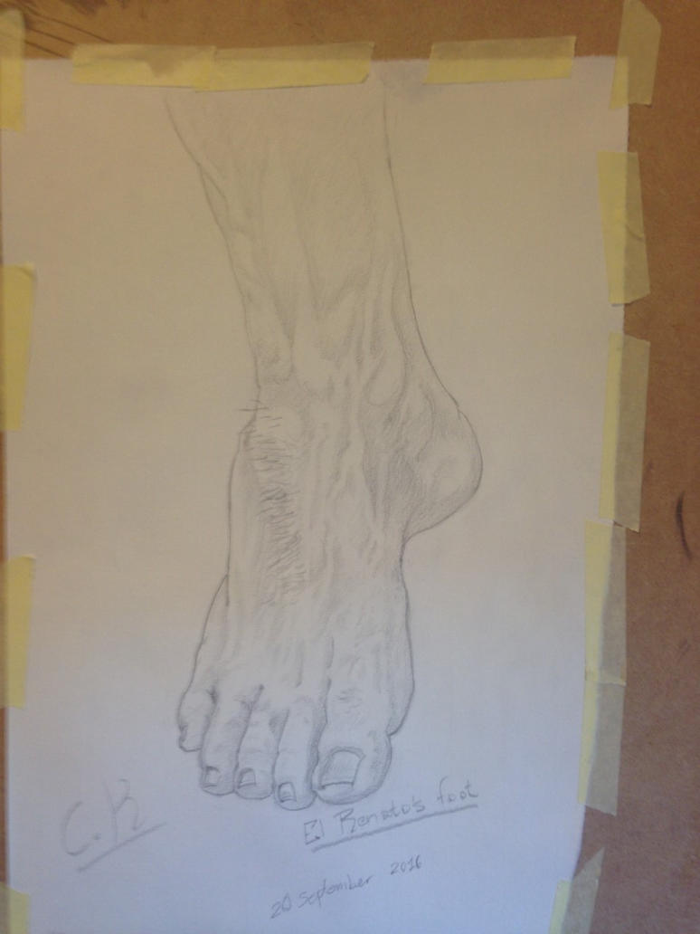 Unnecessarily Long Study of a Foot... by Cid-Alderlaine