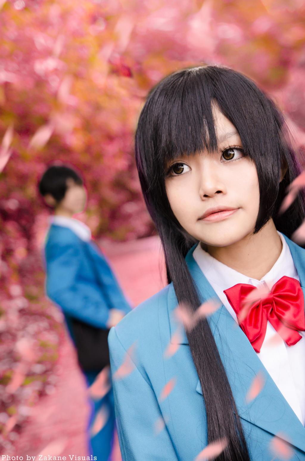 Kimi ni Todoke by Zakane