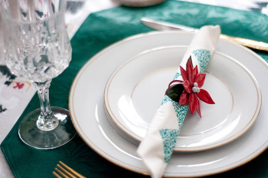 Napkin in Place