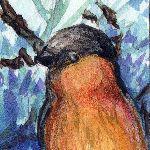 Inchie #5 Bullfinch