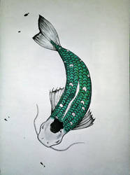 Silver carp by Chatshiki