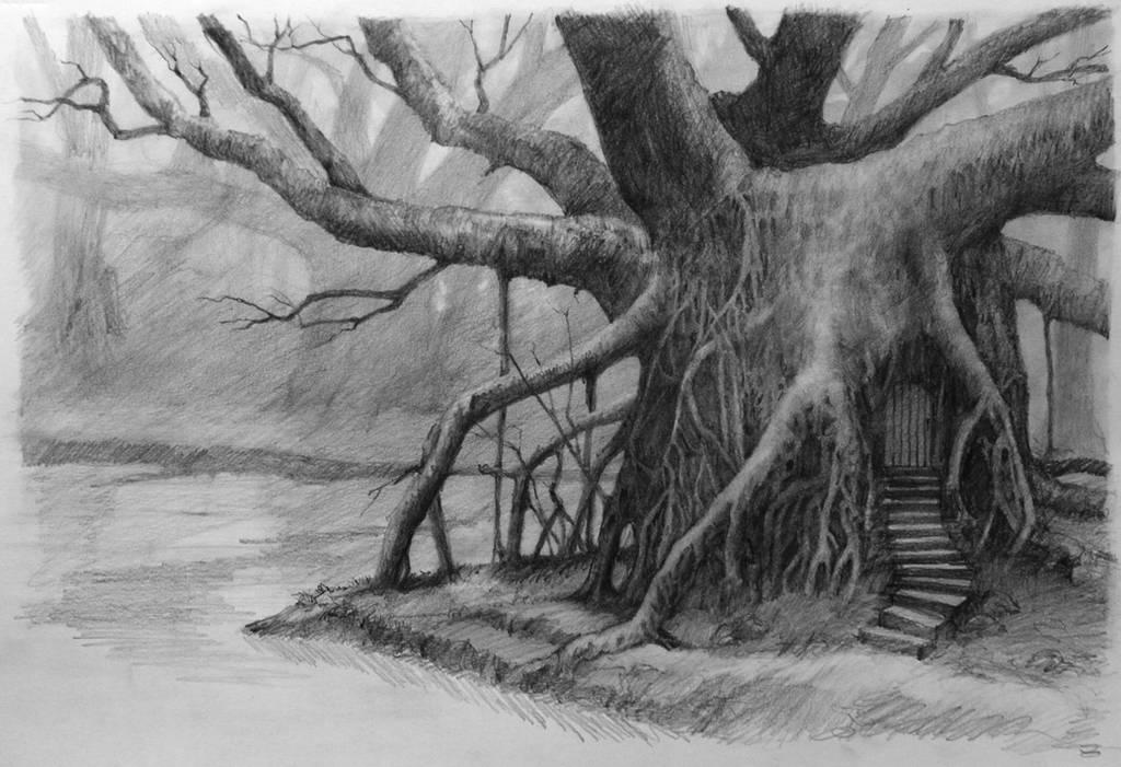 Tree by graemeb