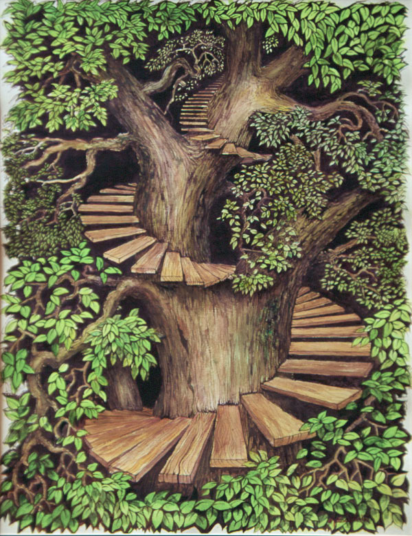 Tree of Life by graemeb