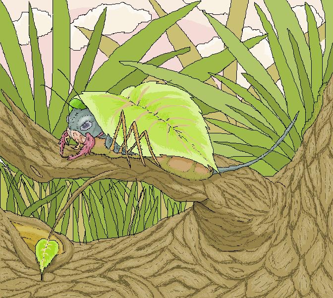 Manuda drum bug 2 by kolishtikovich