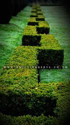 Erddig Gardens by Deepsies