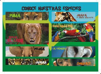 Zoo Brochure inside