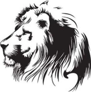 KARTTAL03's Profile Picture