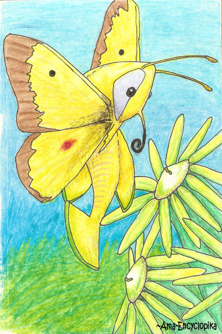 Butterfly Fish by Ama-Encyclopika