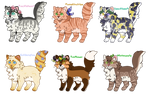 Accessory Kittens (CLOSED)