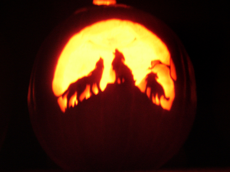 Wolf pumpkin by elipse on deviantart