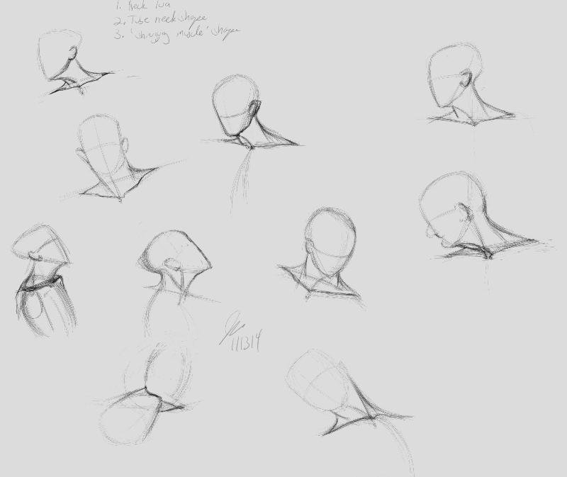 neckStudies by elipse