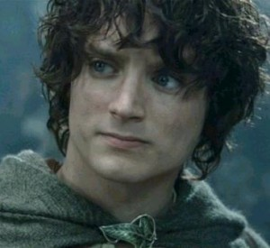FrodoBaggins31955's Profile Picture