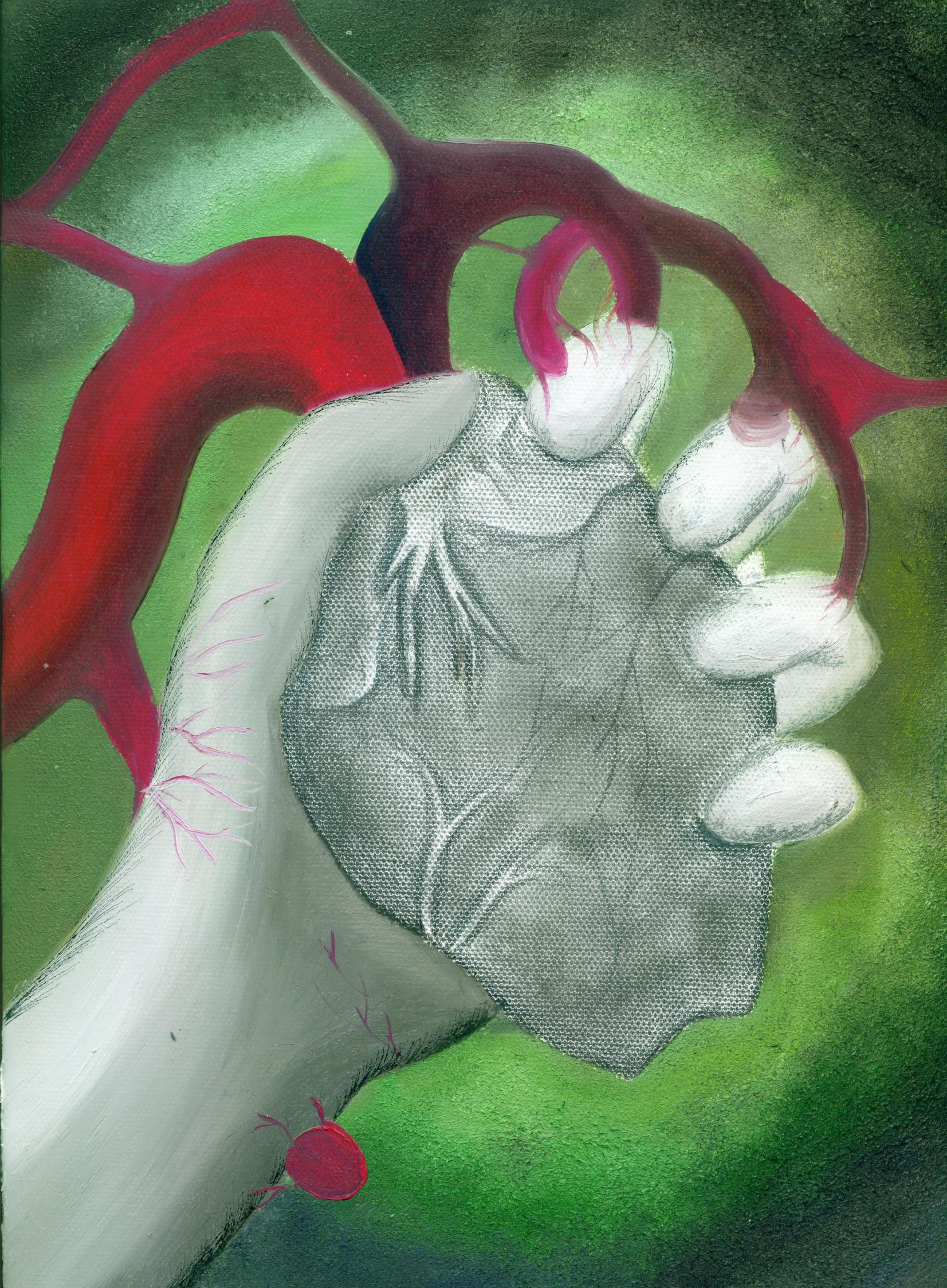 Hand Holding Heart Drawings Hand Holding Anatomical Heart