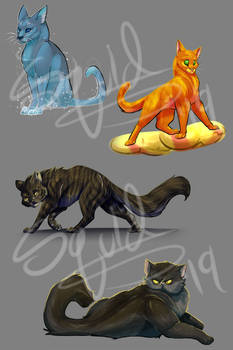 Warrior Cats Design Challenge