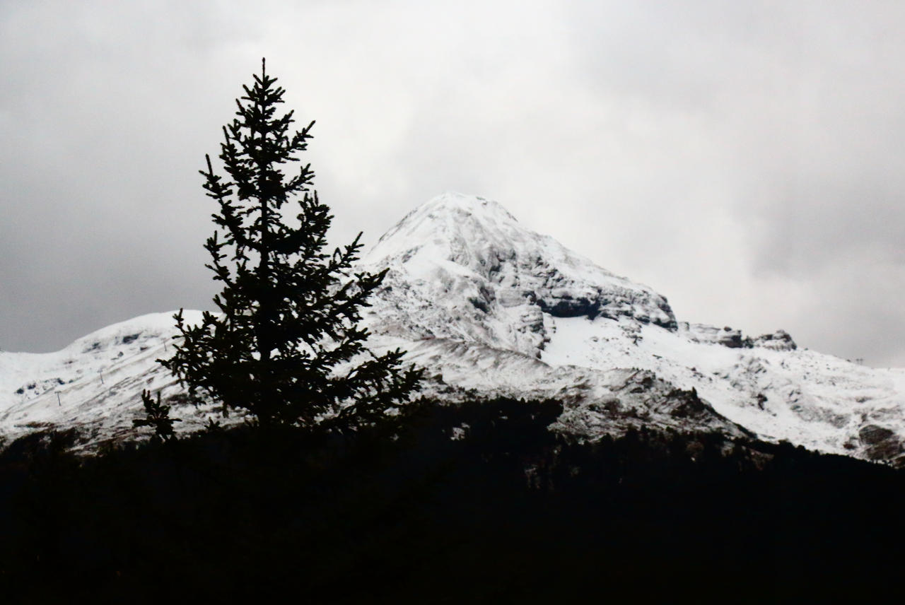 Tree and Snowy Mountain by Destroth