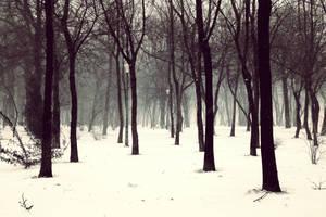 Heavy Snow by Destroth