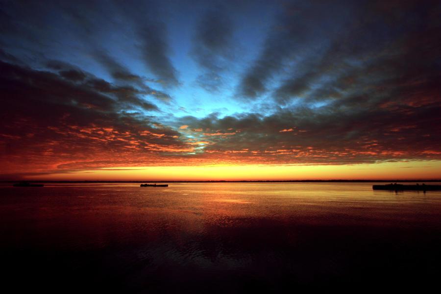 Morning Glory by Nefarious069