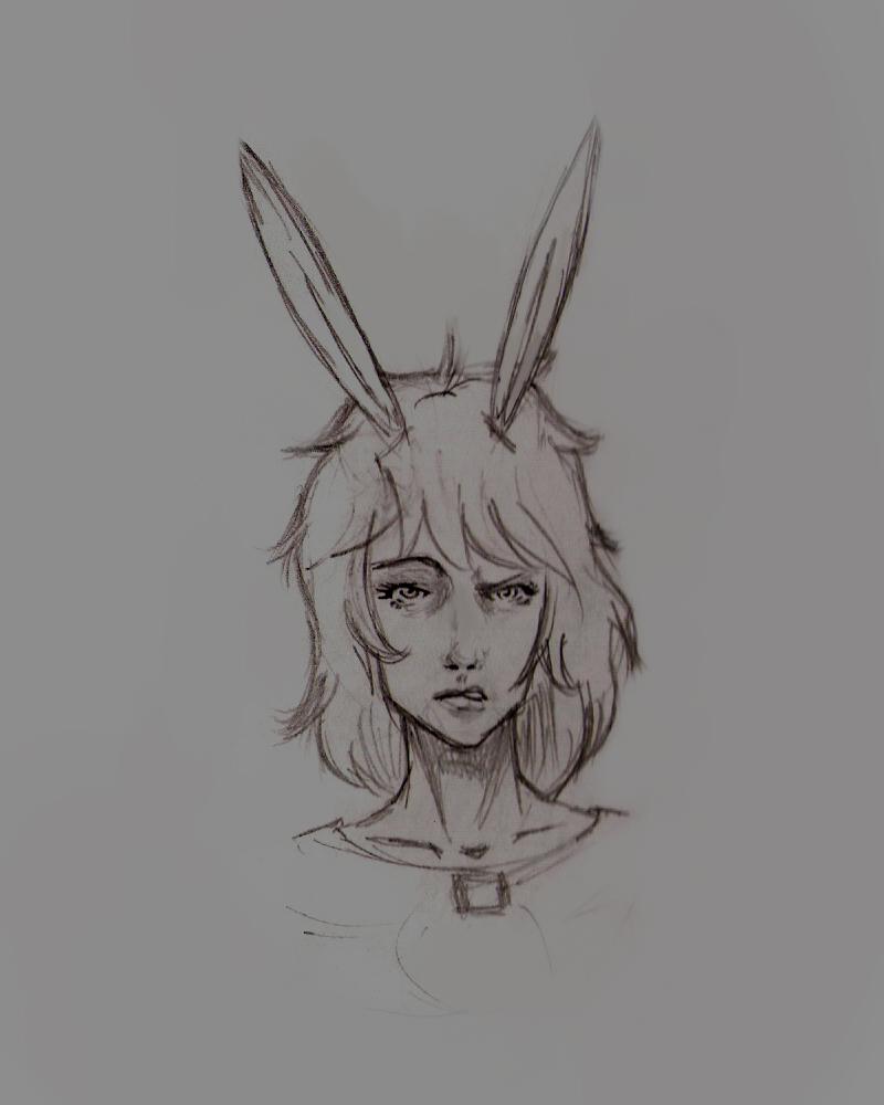 cute bunny drawings - 800×1000