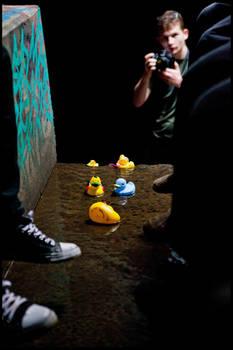Duck Race 2012