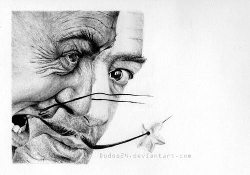 Different faces of Dali