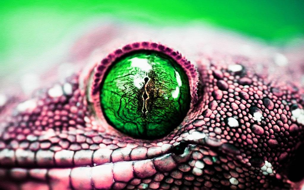 Как сделать глаз змеи