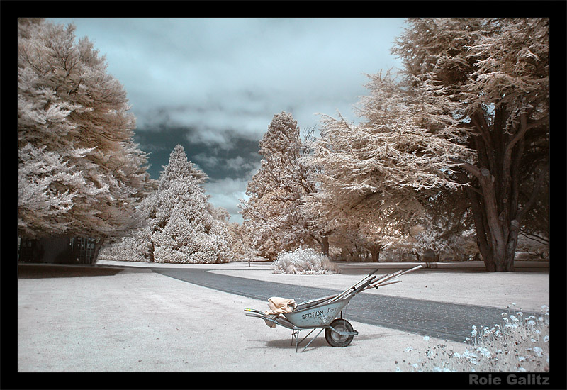 the Lonely Wheelbarrow by RoieG